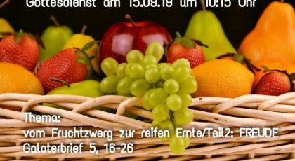 Vom Fruchtzwerg zur reifen Ernte: Freude